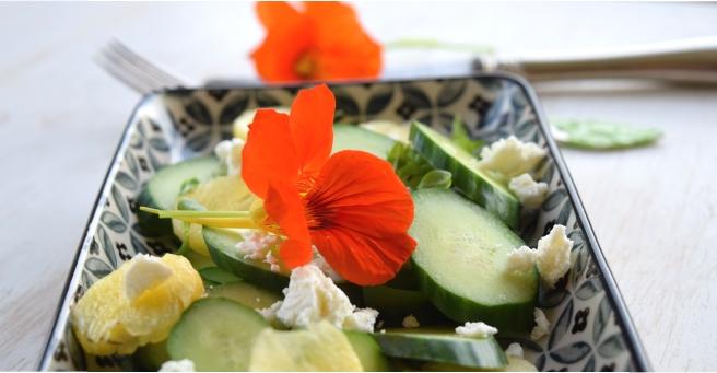 Einfacher Gurkensalat mit Ananas und Kapuzinerkresse.